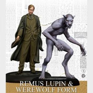 Remus Lupin & Werewolf